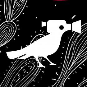 Logo of Cine Jardim - Festival Latino-Americano de Cinema de Belo Jardim