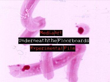 Logo of Underneath the Floorboards