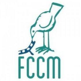 Logo of CAJÓN DEL MAIPO FILM FESTIVAL