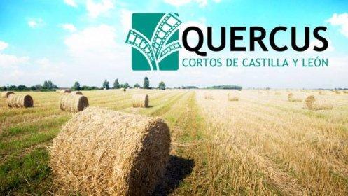 Photo of Proyecto Quercus - Cortos de Castilla y León