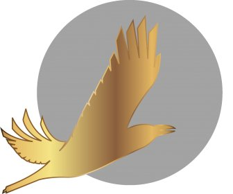 Logo of The Arctic International Film Festival 'Golden Raven'
