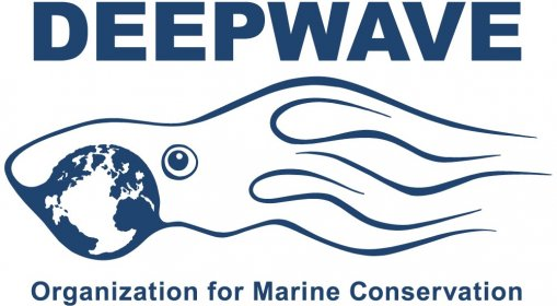 Logo of DEEPWAVE Filmfestival for the Protection of the Oceans